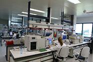 Bujanovic Sektori Industrija